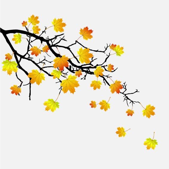 Vindusfolie Høstblader