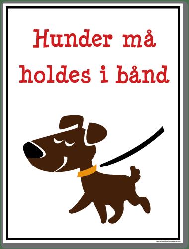 Hunder må holdes i bånd