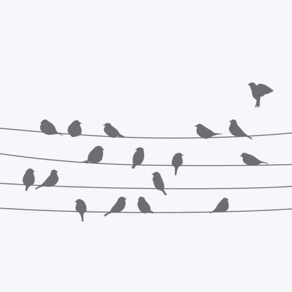 Vindusfolie Trådfugler