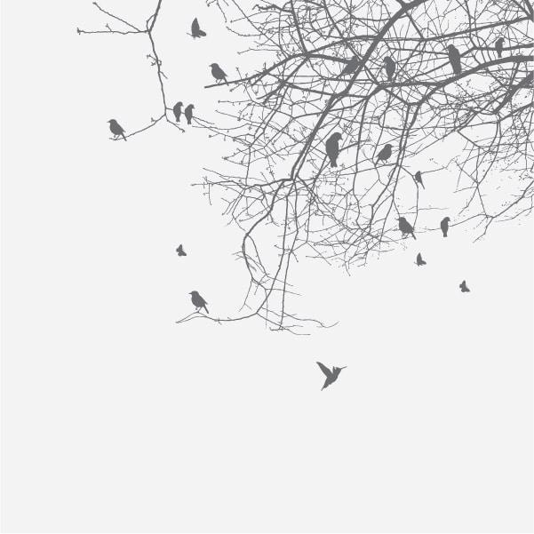 Vindusfolie Fugleflokk
