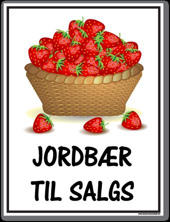 jordbær til salgs