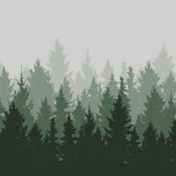 Vindusfolie frostet med skogsmotiv.