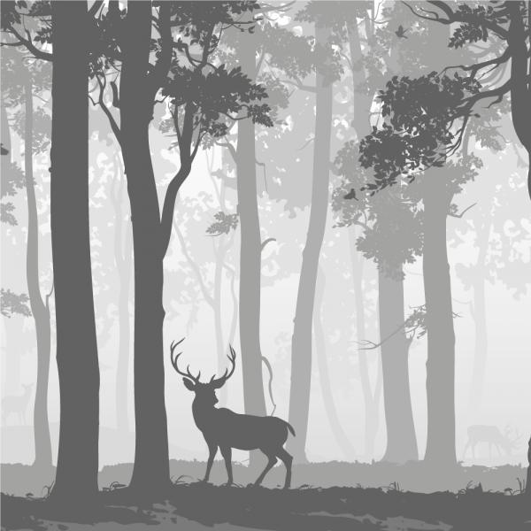 Vindusfolie frost - Rådyr. Kvadrat med motiv. Frostfolie av en skog med et rådyr.